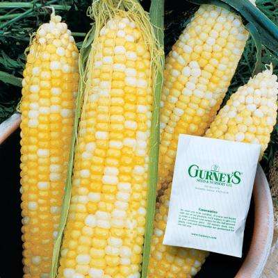 Sweet Corn Honey and Cream Hybrid (250 Seed Packet)