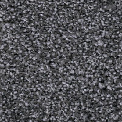 Founder - Color 977 Tailor-Made Texture 12 ft. Carpet