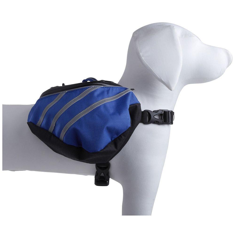 Medium Blue Everest Dupont Backpack