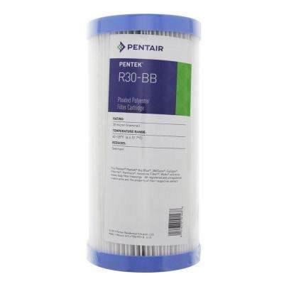 R30-BB 9-3/4 in. x 4-1/2 in. Pleated Polyester Water Filter