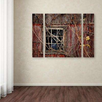 """24 in. x 32 in. """"Old Barn Window"""" by Lois Bryan Printed Canvas Wall Art"""