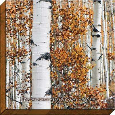 """Nature Made """"Colors of the Spirit Birch"""" By Carpentree Canvas"""