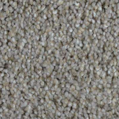 Carpet Sample-Reign -Color Highland Texture 8 in. x 8 in.