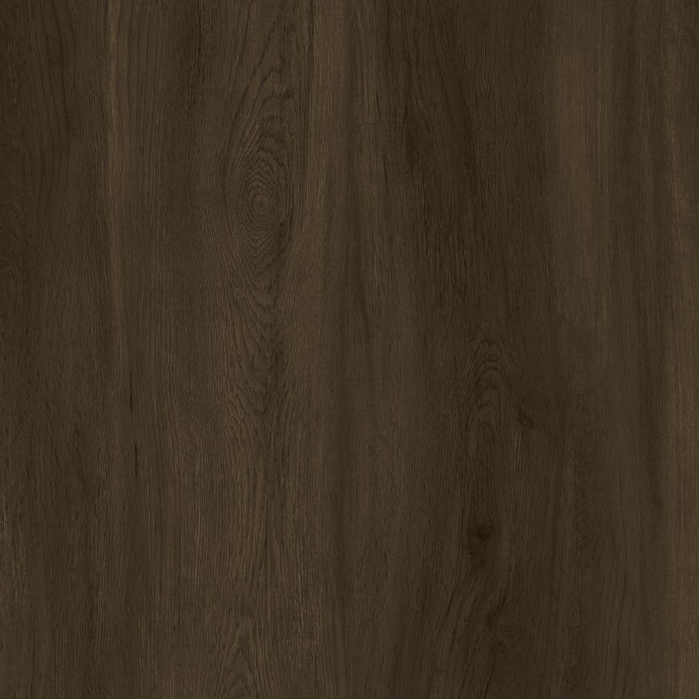 LifeProof Take Home Sample - Seaside Oak Luxury Vinyl Flooring - 4 in. x 4 in.