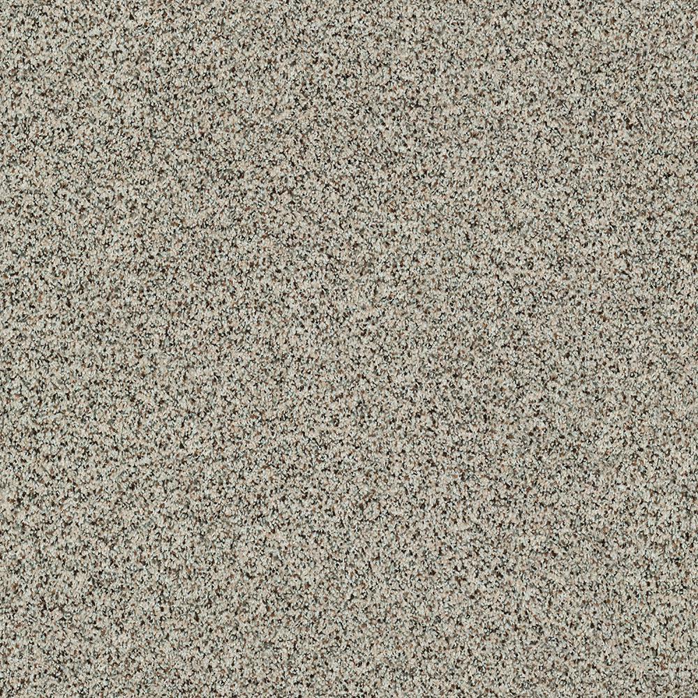 Carpet Sample - Madeline I - Color Umber Texture 8 in. x 8 in.