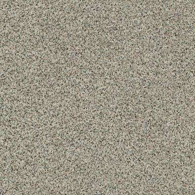Carpet Sample - Madeline I - Color Umber Texture 8 in. x 8 in.