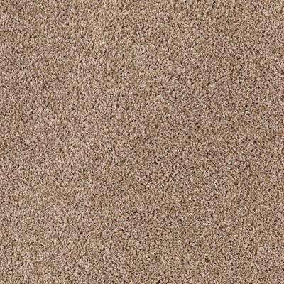 Durst II - Color Gingerbread Texture 12 ft. Carpet