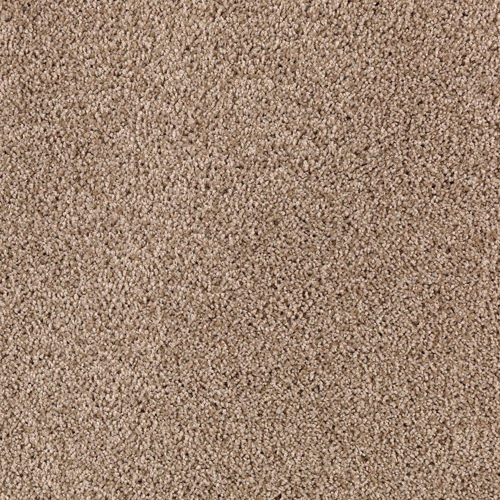 Durst II - Color Gingerbread Texture 12 ft. Carpet
