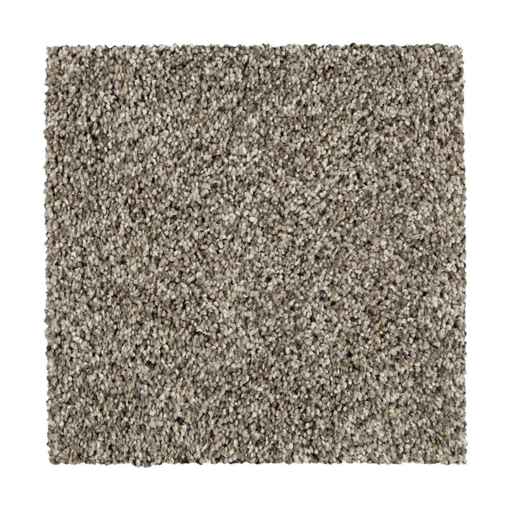 PetProof Maisie I - Color Lost Horizon Texture 12 ft. Carpet