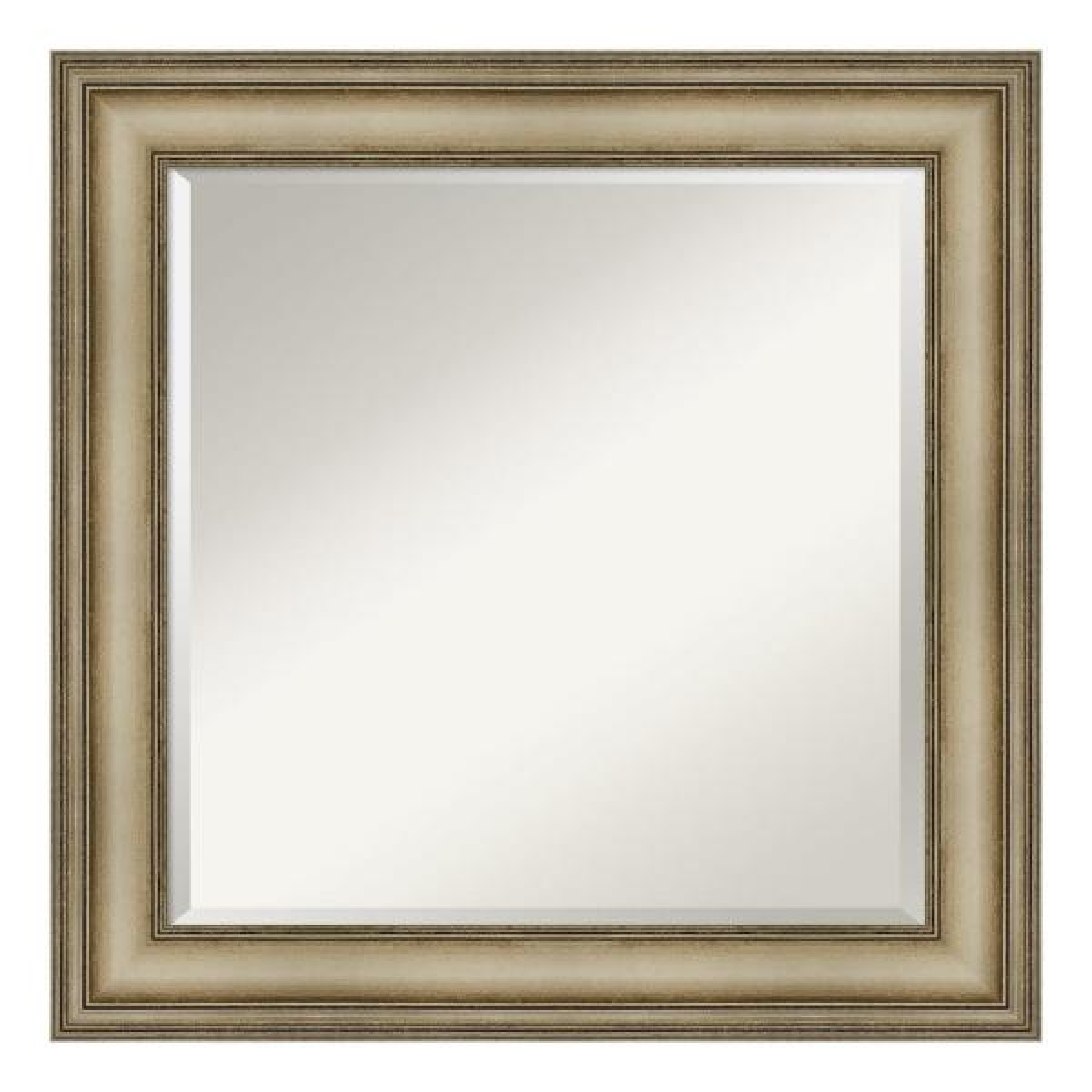 Amanti Art Mezzanine Antique Silver Decorative Wall Mirror DSW4093106