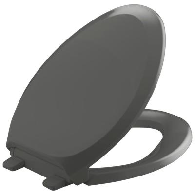French Curve Quiet-Close Elongated Toilet Seat with Grip-tight Bumpers in Thunder Gery