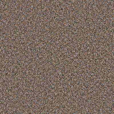 Carpet Sample - Gateway II - Color Fleming Texture 8 in. x 8 in.