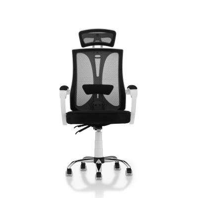 Zach White Mesh Ergonomic Swivel Office Chair