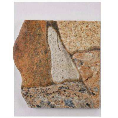 Attica Gris Ceramic Floor and Wall Tile - 3 in. x 4 in. Tile Sample