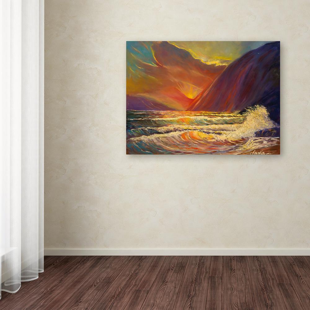 trademark fine art 35 in x 47 in hawaiian coastal sunset by