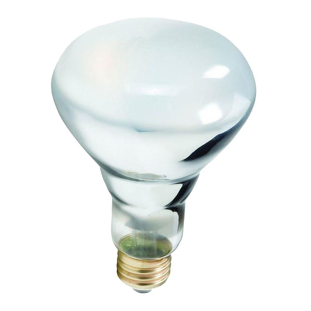 65-Watt Incandescent BR30 Flood Light Bulb (24-Pack)