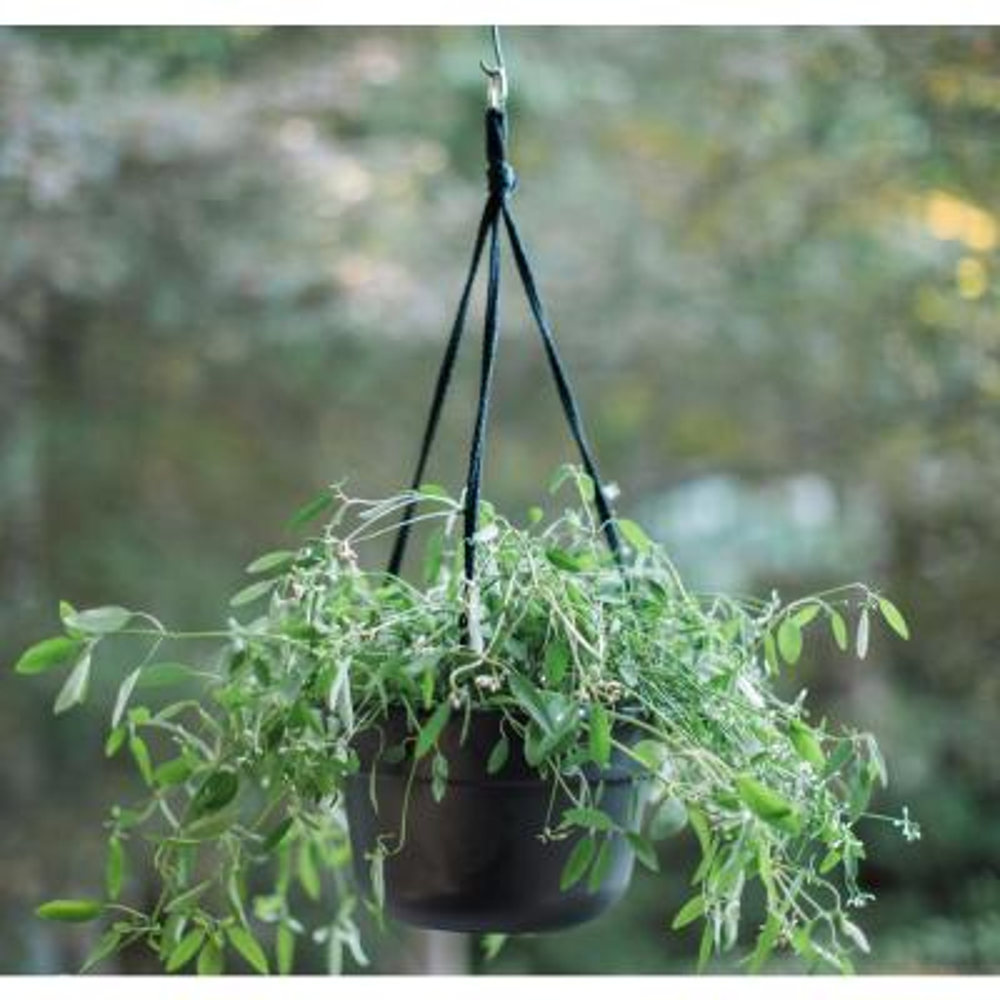 Dura Cotta 12 in. x 6.75 in. Pebble Stone Plastic Self Watering Hanging Basket Planter