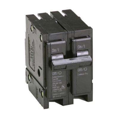 70 Amp 2 in. Double-Pole Type BR Replacement Circuit Breaker