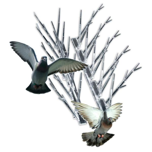 Bird X 10 Ft Original Plastic Bird Spikes Stops Pigeons Sp 10 The Home Depot