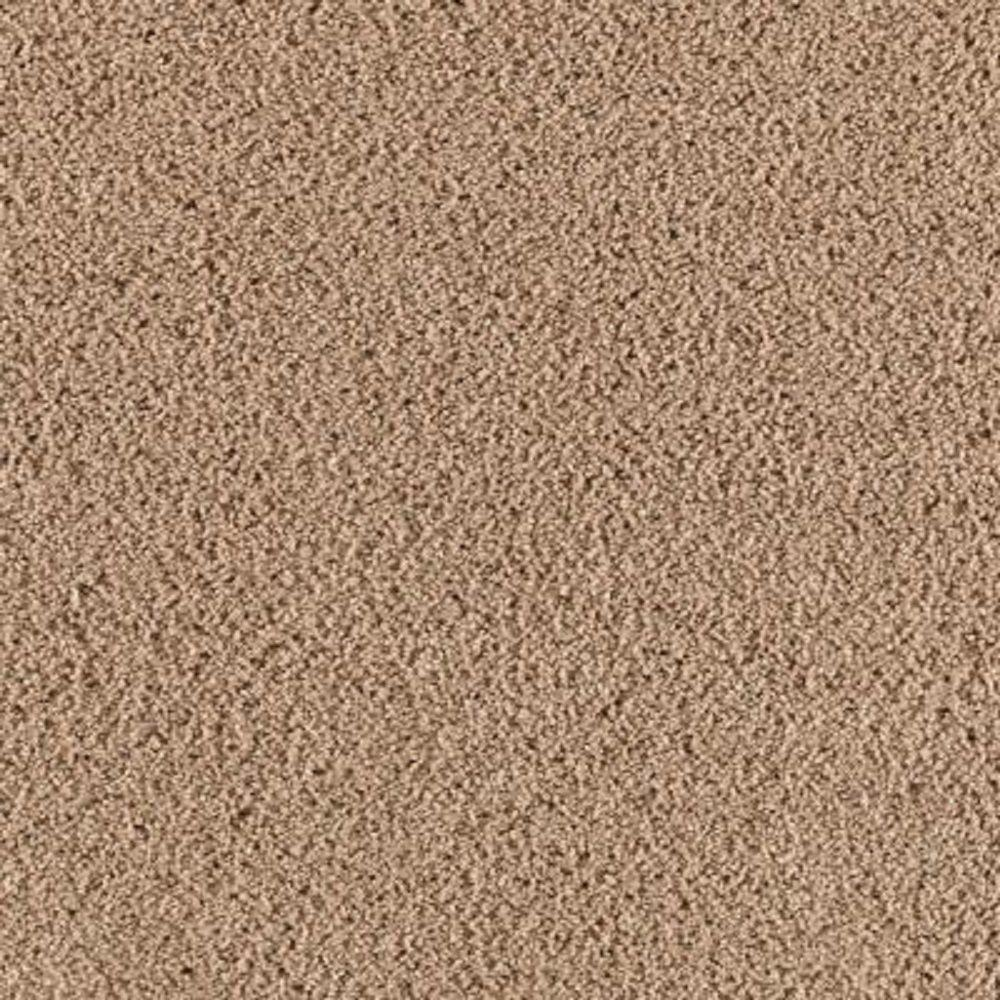 Lifeproof Carpet Sample Wesleyan I Color Brushed Suede