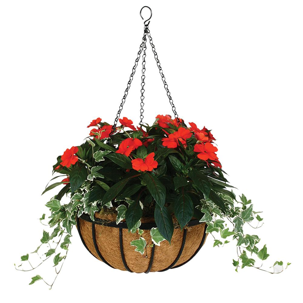 Gardman 14 In Georgian Hanging Basket With Coco Liner R211 The Home Depot