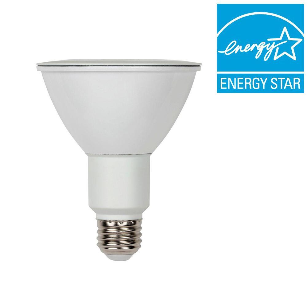 75W Equivalent Bright White PAR30 Dimmable Flood LED Light Bulb