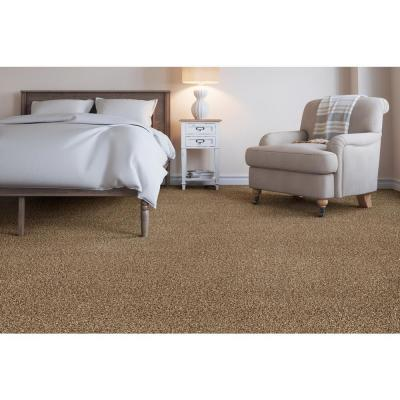 Trendy Threads I - Color Stunner Texture 12 ft. Carpet