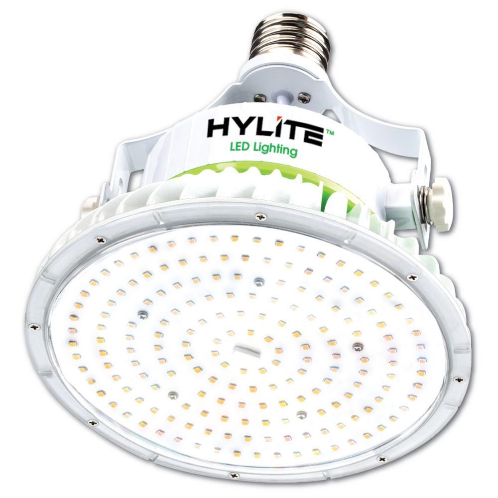 40W Lotus LED Lamp 200W HID Equivalent 5000K 5600 Lumens Ballast Bypass 120-277V E39 Base IP 65 UL & DLC Listed