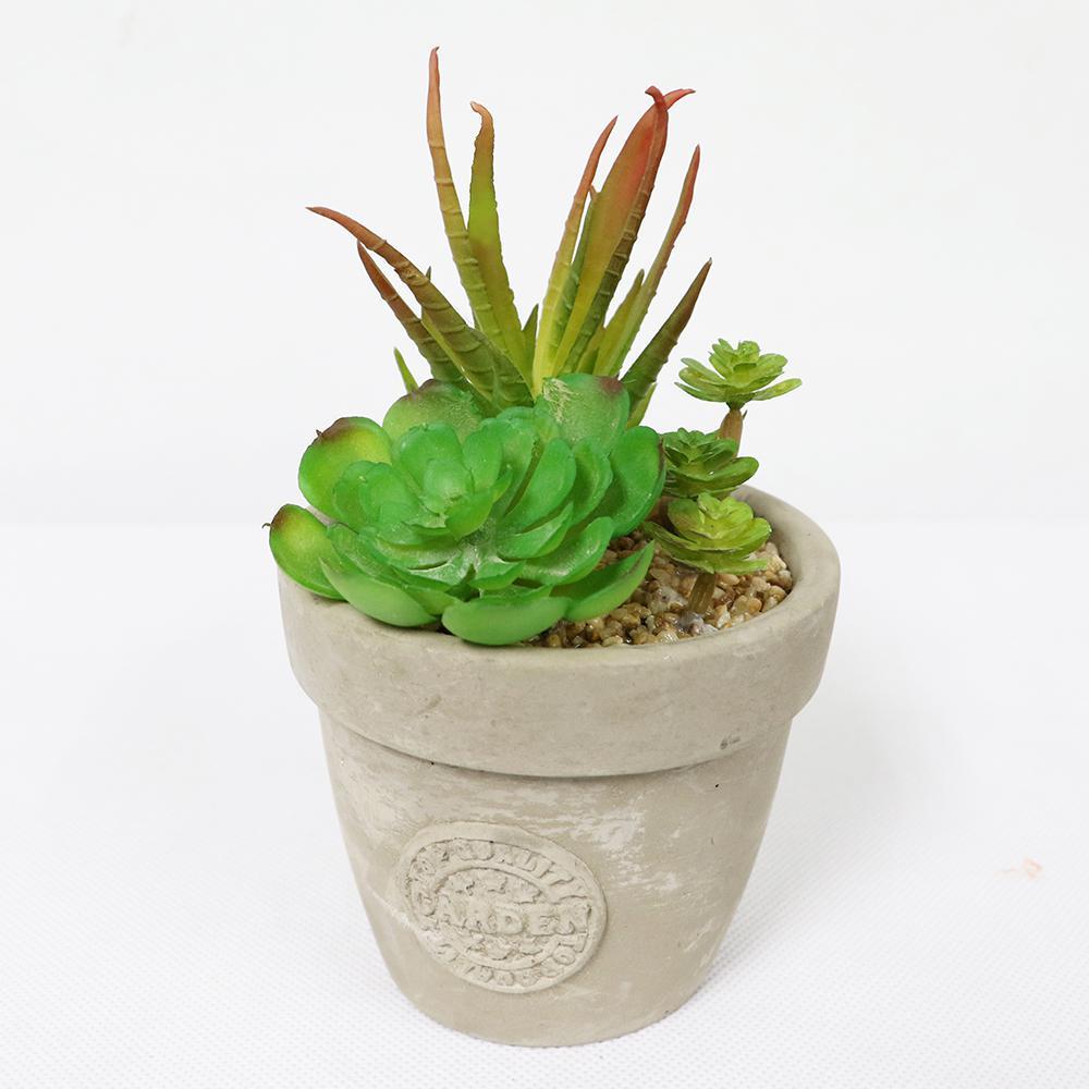 5 in. Indoor Artificial Succulents in Pot