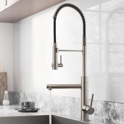 Artec Pro Single-Handle Pull-Down Sprayer Kitchen Faucet and Pot Filler in Spot Free Stainless Steel
