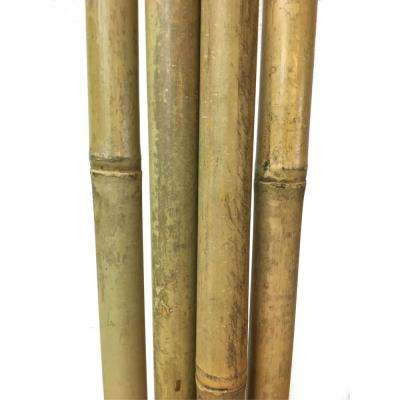 1 in. Diameter Tonkin Bamboo Pole 8 ft. L, Set of 5