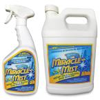 32 oz. Mold and Mildew Stain Remover with 1 Gal. Mold and Mildew Stain Remover Set