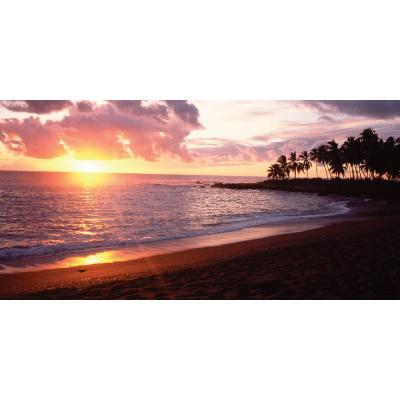 80 in. x 40 in. Sunset Wall Mural