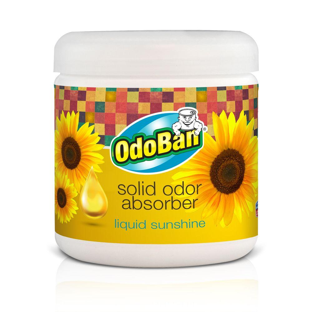 OdoBan 14 oz. Liquid Sunshine Solid Odor Absorber