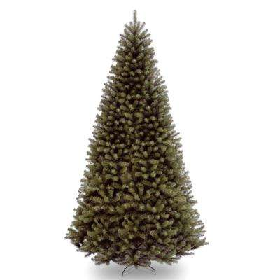 16 ft. North Valley Spruce Tree