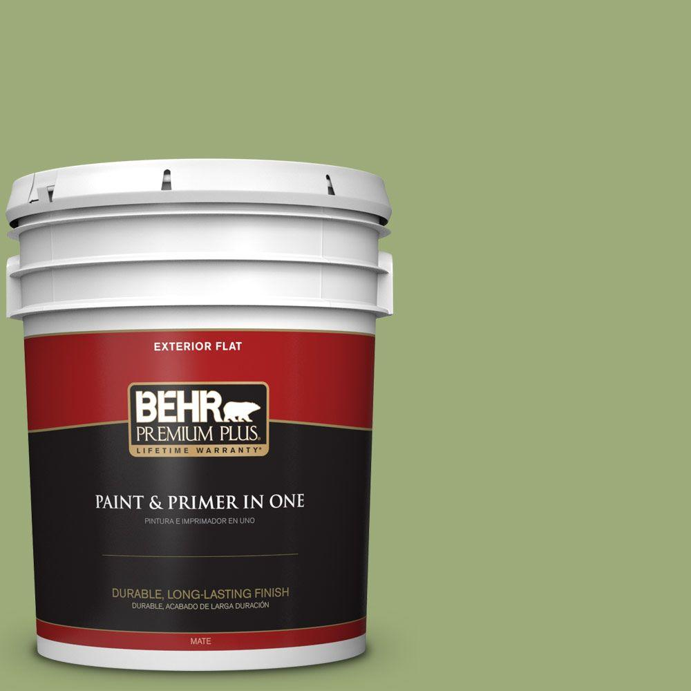 5-gal. #BIC-12 Siamese Green Flat Exterior Paint