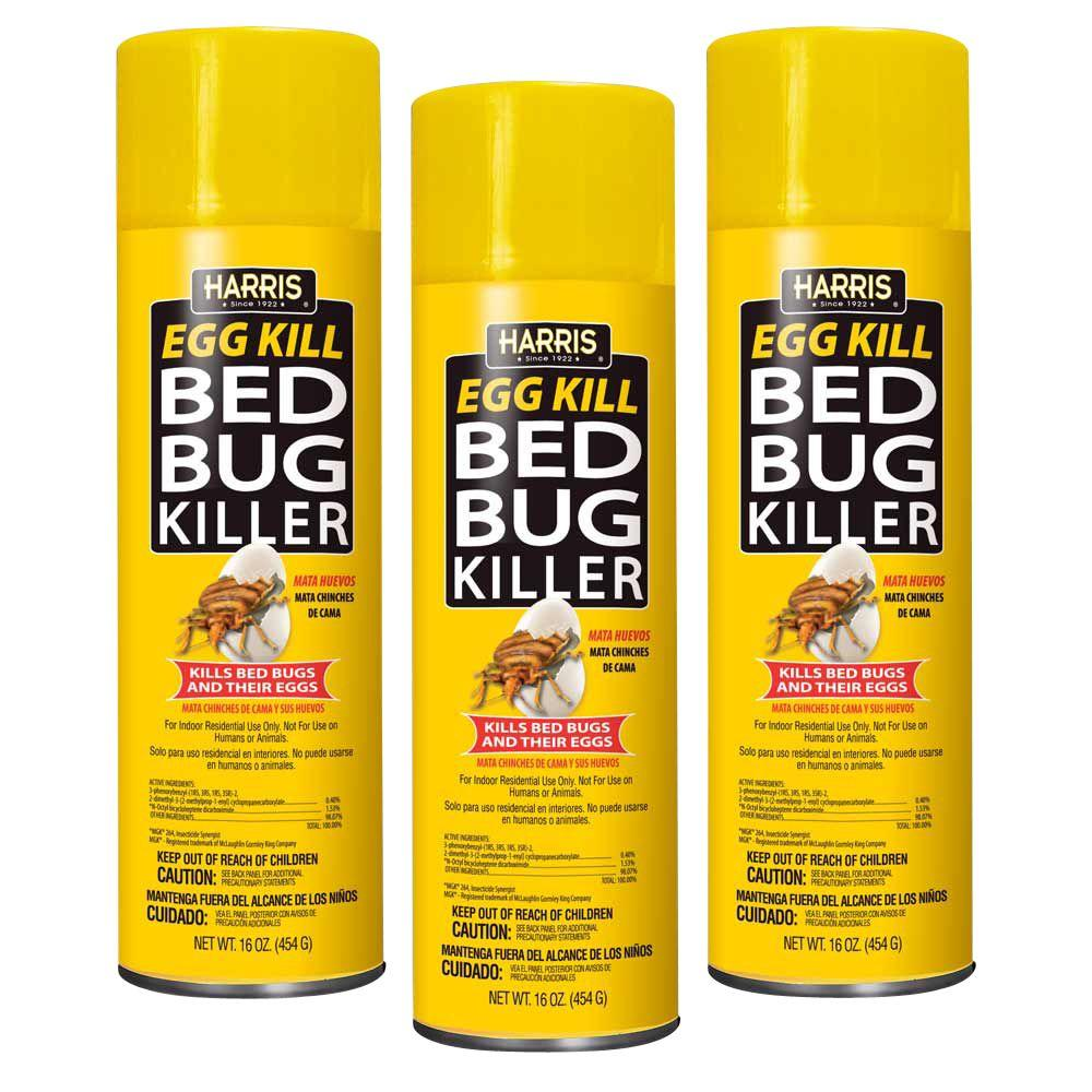 other home up close kill bugs earth remedies to how bed diatomaceous with