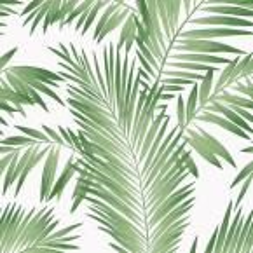 Tropical Palm Green Wallpaper