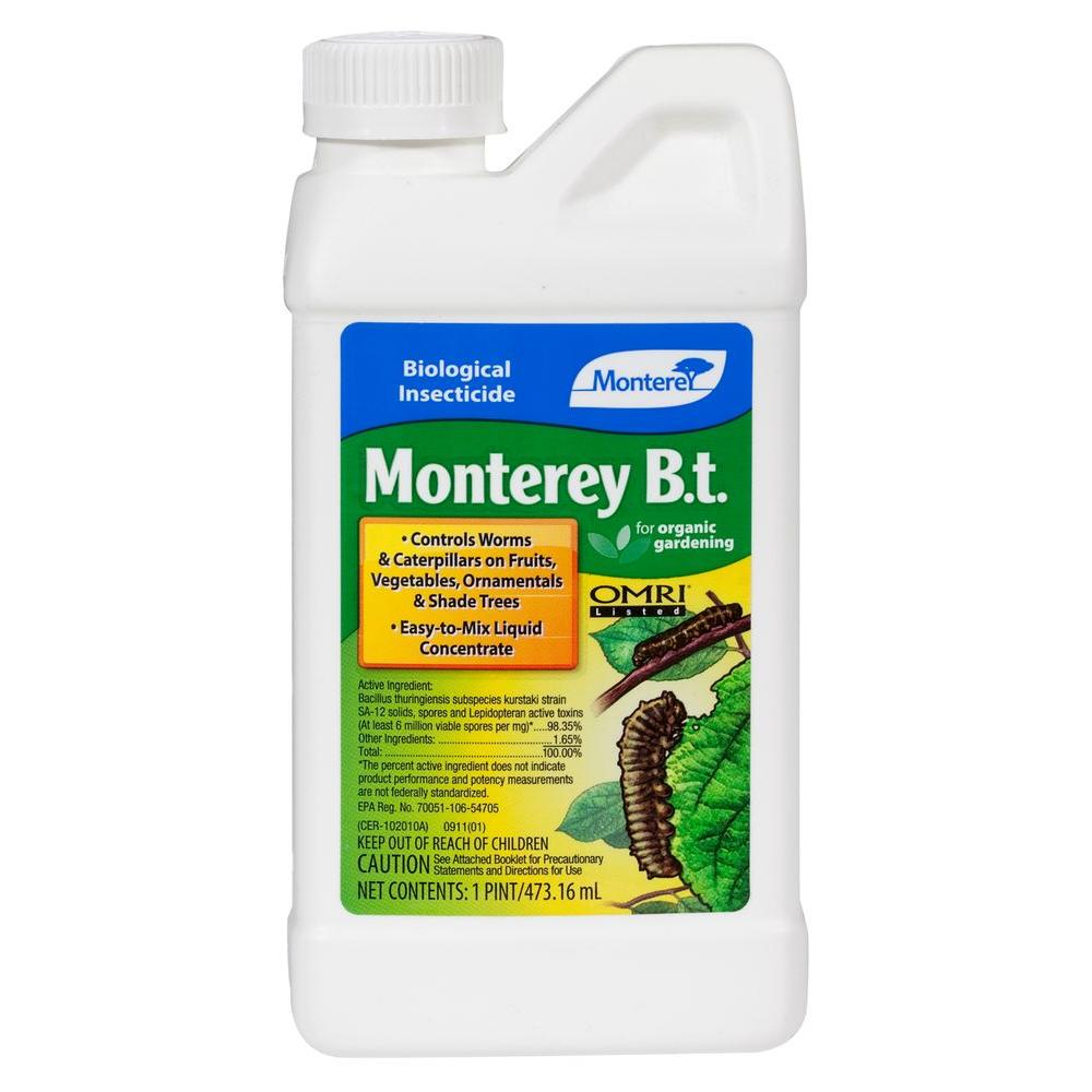 Monterey B T  (Bacillus Thuringiensis) Pint Concentrate Outdoor Organic  Insecticide