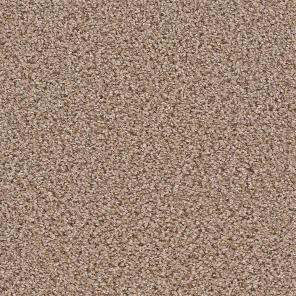 Carpet Sample - Added Value - Color Merit Texture 8 in.