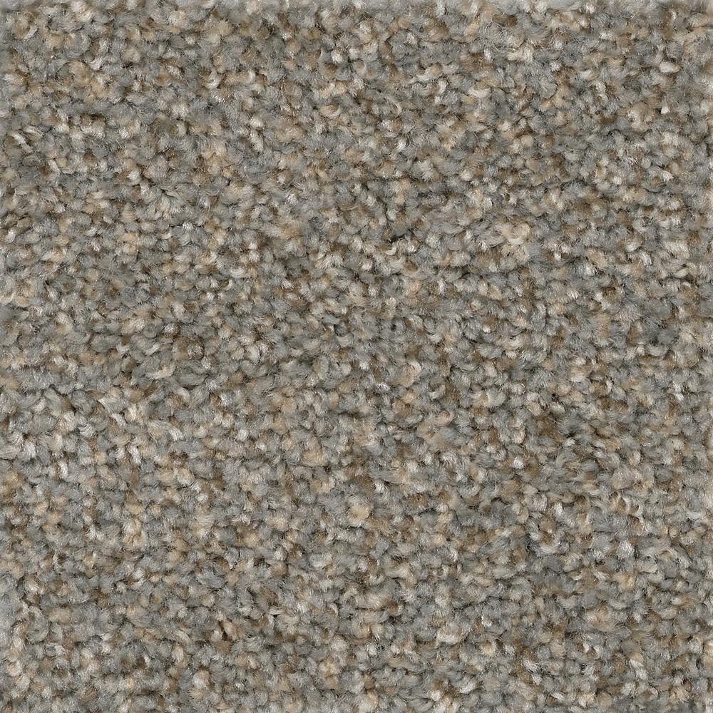 TrafficMaster Matchless - Color Elk Texture 12 ft. Carpet