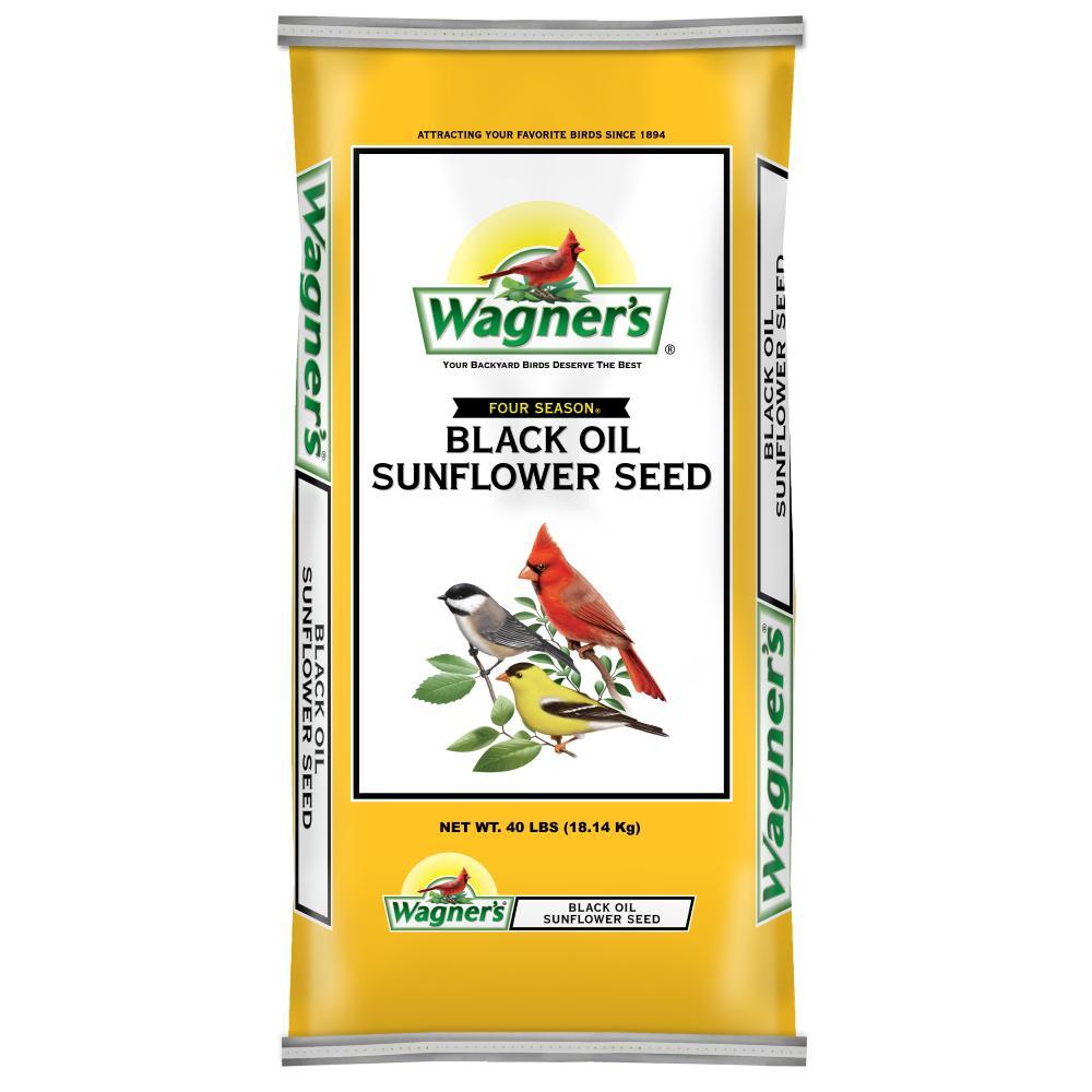 40 lb. Black Oil Sunflower Seed