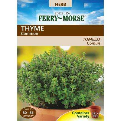 Thyme Common Seed