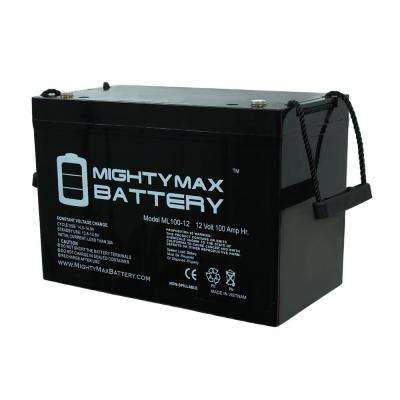 12-Volt 100 Ah Rechargeable Sealed Lead Acid (SLA) Battery