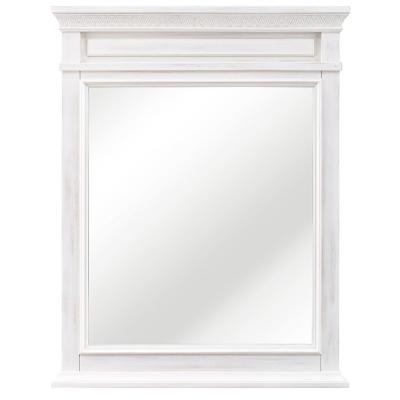 Cailla 25 in. W x 32 in. H Framed Wall Mirror in White Wash