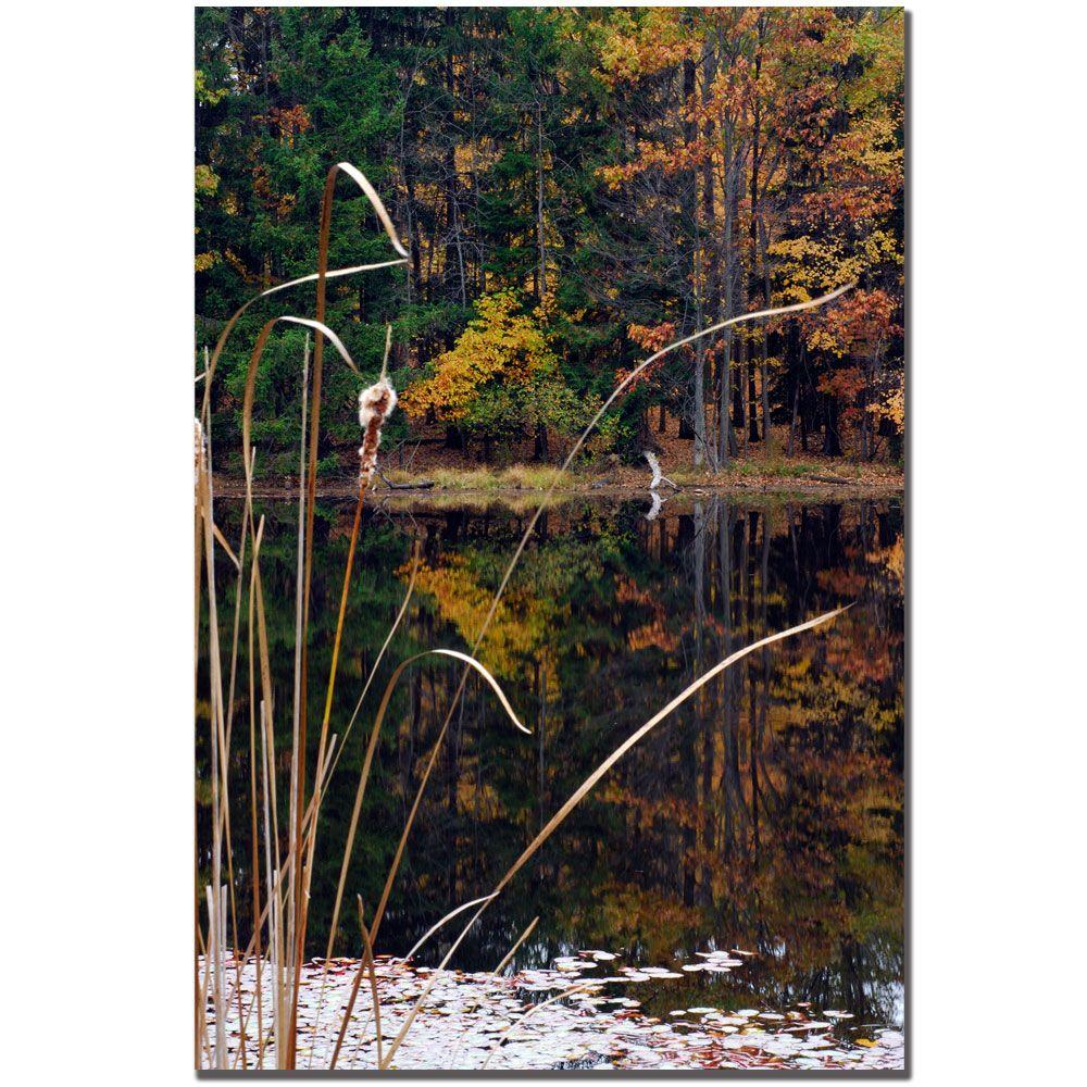 24 in. x 16 in. Serene Sylvan Pond Canvas Art