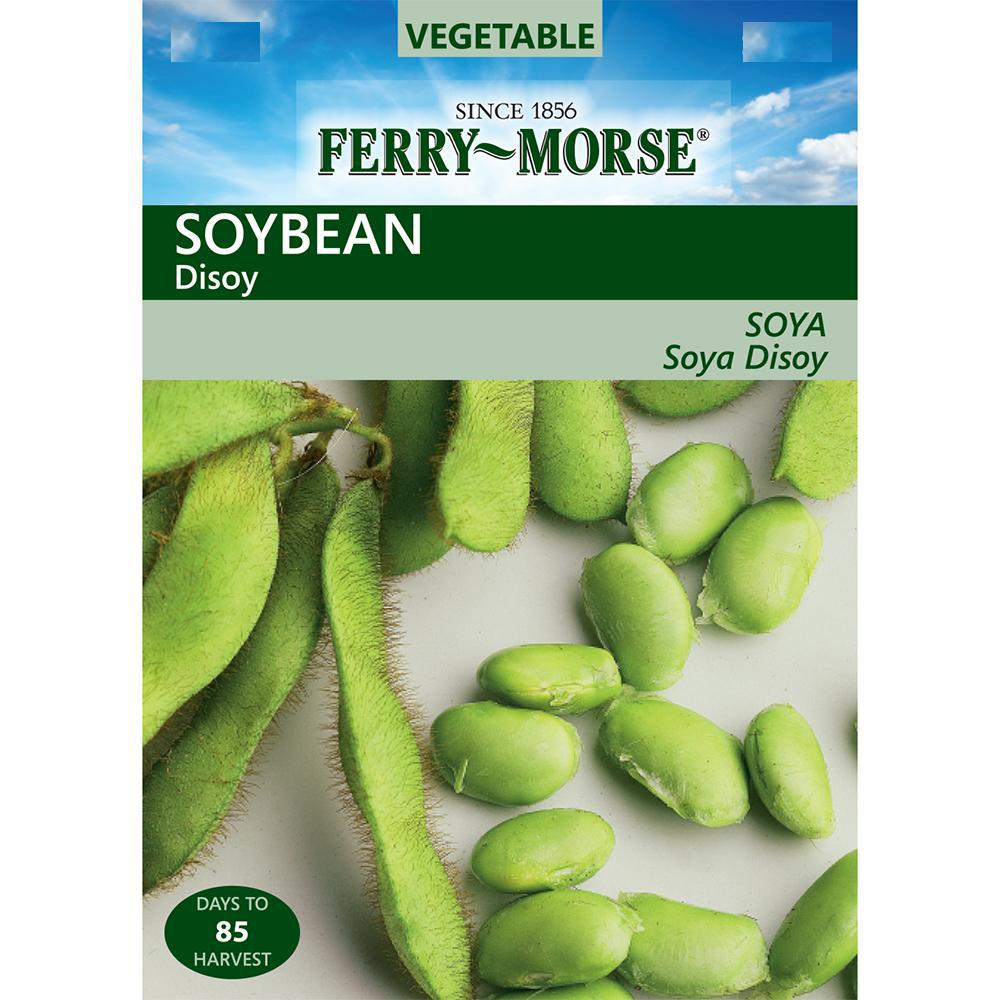 Soybean Disoy Seed