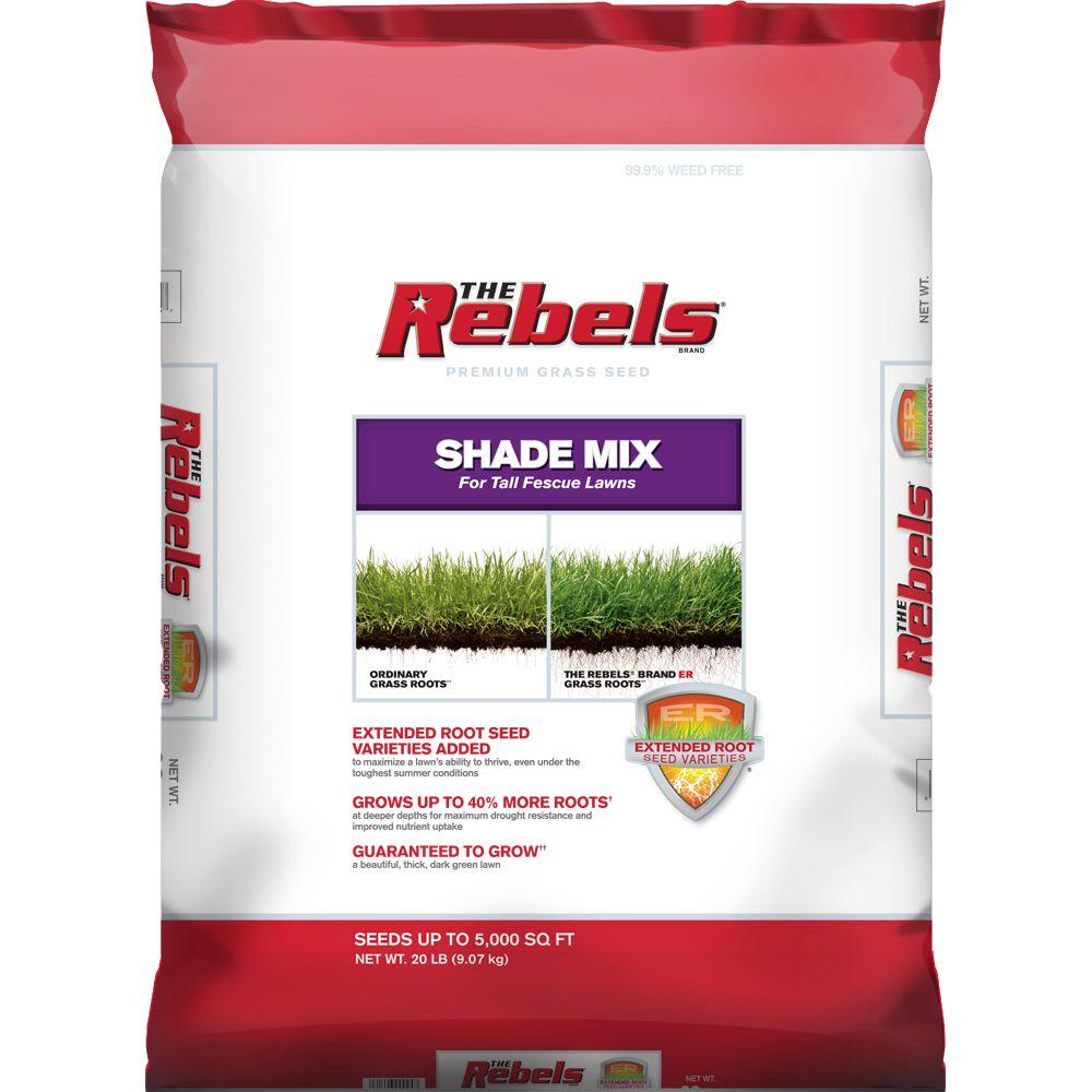 Tall Fescue Shade Gr Seed Mix