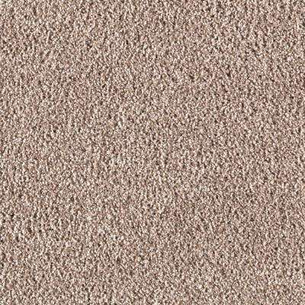 Metro II - Color Pebble Path 12 ft. Carpet