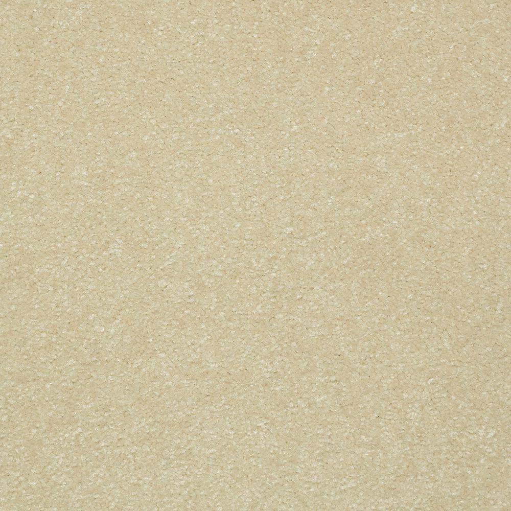 Platinum Plus Carpet Sample Kingship Ii Color Always